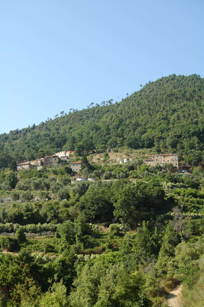 Uno scorcio di case Cristai-Peverei, in Negi, Frazione di Perinaldo (IM), località citata nelle vicende narrate in questo articolo